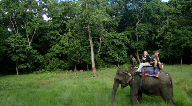 Wildlife tours in Nepal